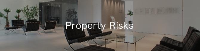 財物リスク